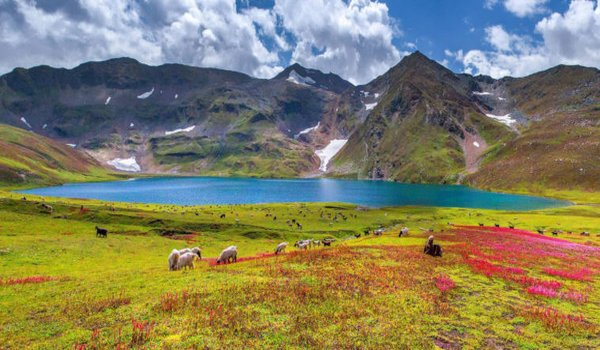 Dudipatsar Lake - Best Camping Sites in Pakistan