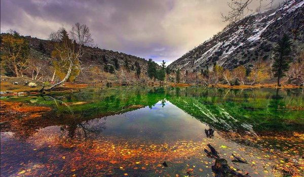 Naltar Valley - Best Camping Sites in Pakistan